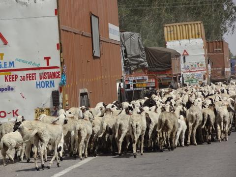 インドの幹線道路
